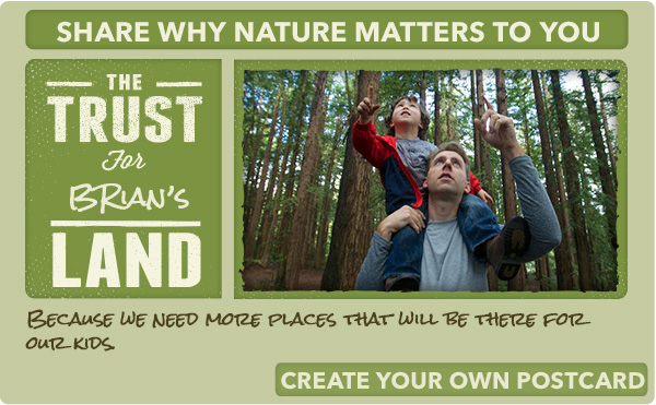 Share why nature matters to you